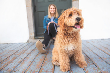 Labradoodle Dog and woman outside on balcony