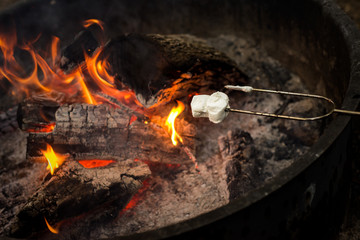 Roasting marshmallows on a campfire outdoors