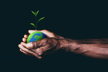 earth in hands. save the world