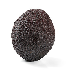 Single ripe dark brown (bilse variety) avocado isolated on white background