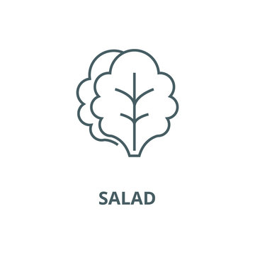 Salad vector line icon, outline concept, linear sign