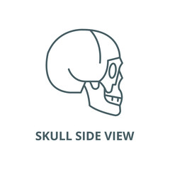 Skull side view vector line icon, outline concept, linear sign