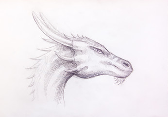 drawing of dragon head on paper. Profile portrait.