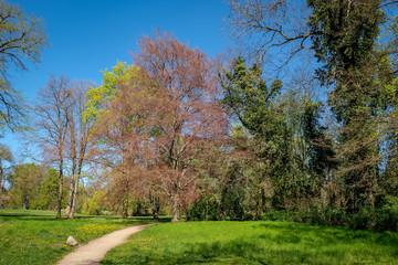 Lenné-Park in Dahlwitz bei Berlin im Frühling