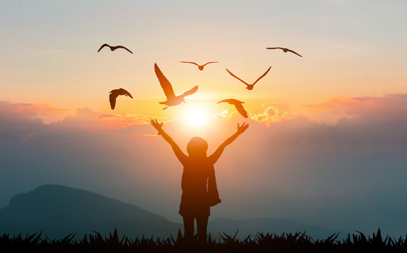 Women holding hands on the mountain evening sunshine show freedom and flying birds silhouette