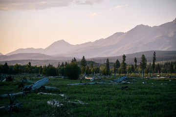 Meadow at Sunset in Polebridge, Montana in Northwest Glacier National Park  Wall mural