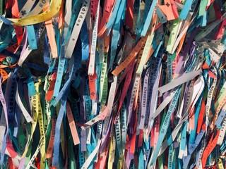Foto op Plexiglas Paradijsvogel Fitas de Nossa Senhora da Conceição
