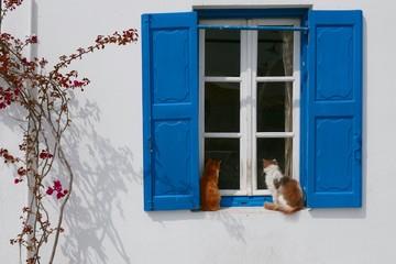Fototapeta Eindrücke aus Mykonos - Griechenland obraz