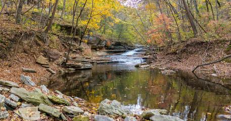 Tanyard Creek Nature Trail Bella Vista, Northwest Arkansas Wall mural