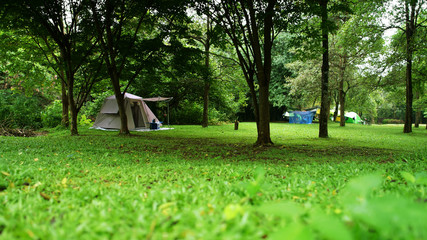nature landscape camping tent under tree or adventure trekking on green grass meadow and waterfall in jungle or forest national park for family vacation picnic on holiday relax travel and rainy season