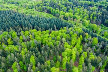 Luftaufnahme Schwäbischer Wald, Rems Murr Kreis, Baden Württemberg, Deutschland