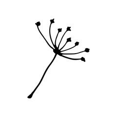 Cute cartoon hand drawn dandelion seed icon. Sweet vector black and white dandelion seed icon. Isolated monochrome doodle dandelion seed icon on white background.