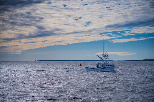 Lobster fishing boats  arrive back to home port from a long day at sea.