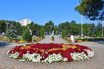 Anapa, Russia, beautiful flower bed in the square of the Soviets in Anapa