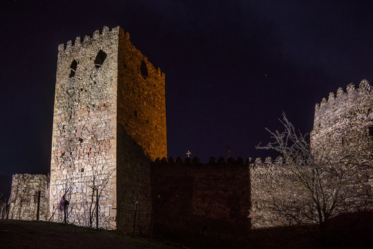 castle wall in front of ananuri castle