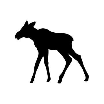 Elk moose calf mammal black silhouette animal. Vector Illustrator.