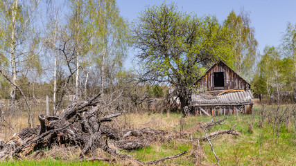 Abandoned little house in Belarus Chernobyl exclusion zone, recently opened for the public from...