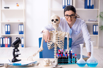 Obraz Young female archaeologist working in the lab  - fototapety do salonu