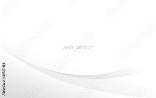 Abstract Geometric Curve Shapes With Silver Tone And