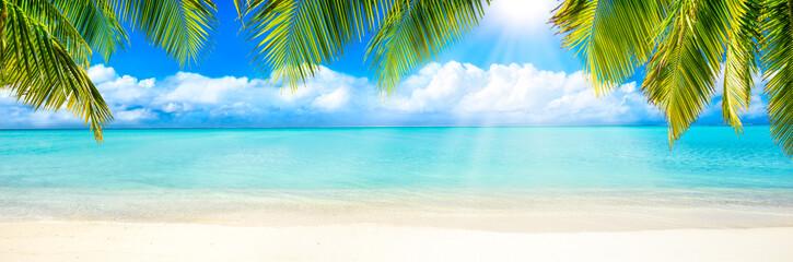 Strand Panorama mit Palmen und Sonne als Hintergrund