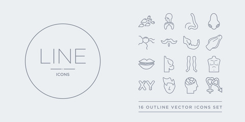 16 line vector icons set such as male and female gender, male head side view with brains, male nose of a line, masculine chromosomes, men chest contains men leg, men shoulder, mouth open, muscle