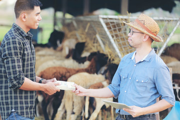 Sheep farm owners are receiving money from partners to expand their businesses.