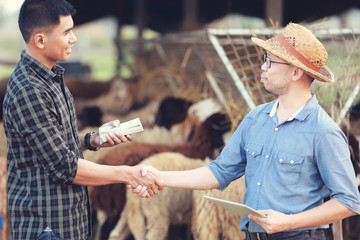 Sheep farm owners are shakehand with partners after receiving a joint venture to expand the business.