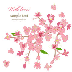 invitation card with branch of cherry for your design