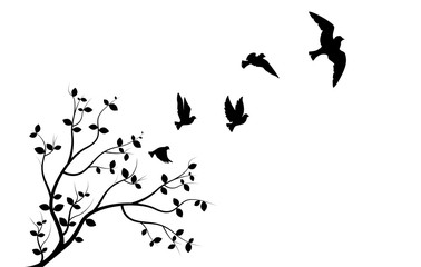 Flying Birds on Branch, Wall Decals, Three Birds Three Design, Couple of Birds Silhouette. Art Design, Wall Decor isolated on white background