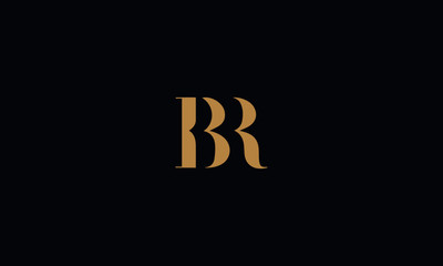 BR logo design template vector illustration
