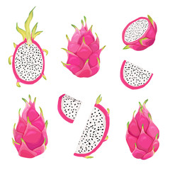 Set of dragon fruits and pitaya illustration design elements. Hand drawn vector in watercolor style for summer romantic cover, tropical wallpaper, vintage texture