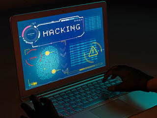 Identity theft, personal data acquisitions, fraud. Obtaining content illegally, pirated software. Hacker violating database. Sensitive information. Computer protection. Internet and computer leaks.