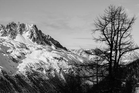 Dans les Alpes à Chamonix