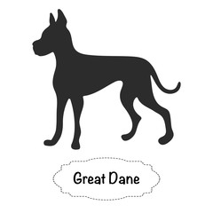 Vector isolated silhouette of Great Dane dog on white background.