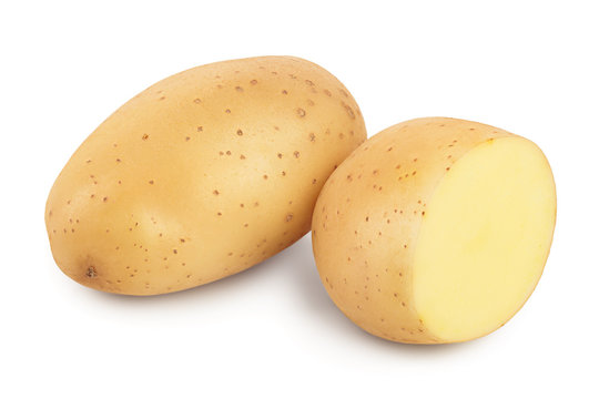 Young potato isolated on white background. Harvest new