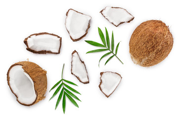 Foto auf AluDibond Palms coconut with leaves isolated on white background. Top view. Flat lay