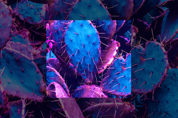 cactuses with needles in the tropics. neon colors. pink and blue. logo