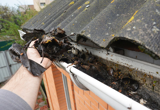 Roofer Cleaning Rain Gutter from Leaves in Spring. Roof Gutter Cleaning Tips. Clean Your Gutters Before They Clean Out Your Wallet. Gutter Cleaning.