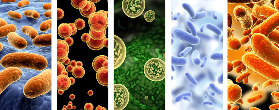 Set of vertical banners with pathogenic bacterias and viruses