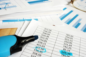 Company financial auditing. Papers with graphs and marker.