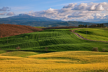 Pienza, Siena, Tuscany, Italy: landscape of the Val d'Orcia countryside