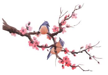 Watercolor sakura branch