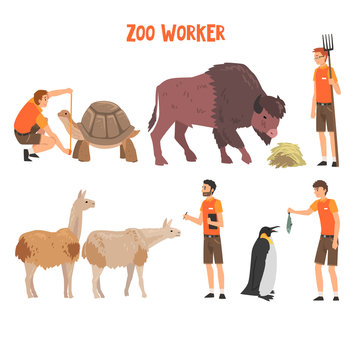 Zoo Workers or Veterinarians Examining, Feeding and Caring of Animals, Professional Zookeepers Characters Working at Zoo Vector Illustration