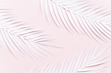 Three paper palm leaves on pink table Wall mural