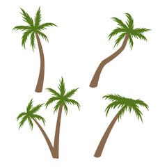 Palm tree vector illustration. Coconut tree cartoon pictures set
