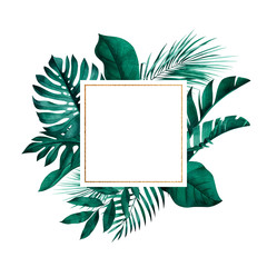 Square frame with exotic monstera, banana and palm leaves in background. Tropical style stationery design.