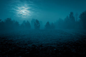Mysterious landscape in cold tones - silhouettes of the trees on the night meadow under the full moon and dramatic night cloudy sky. Fototapete