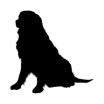 Bernese Mountain Dog Silhouette
