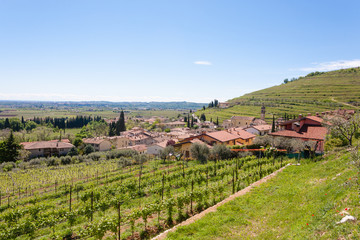 Valpolicella hills landscape, Italian viticulture area, Italy