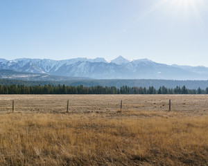 North American steppe or vegetation zone on east of british columbia canada.